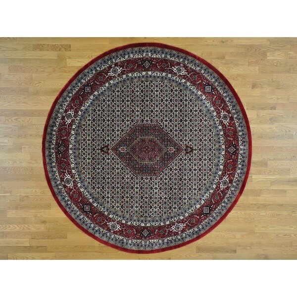 One-of-a-Kind Beaton Bidjar New Zealand Handwoven Ivory Wool Area Rug by Isabelline