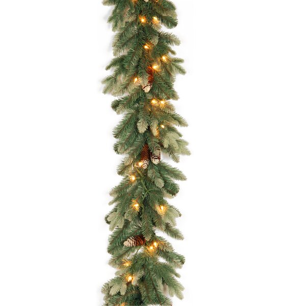 Spruce Garland by August Grove