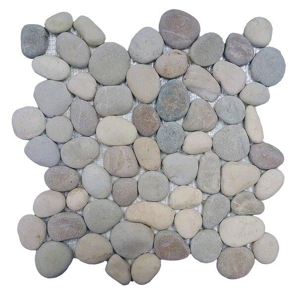 River Rock Random Sized Natural Stone Pebble Tile in Terrene Blend by Solistone