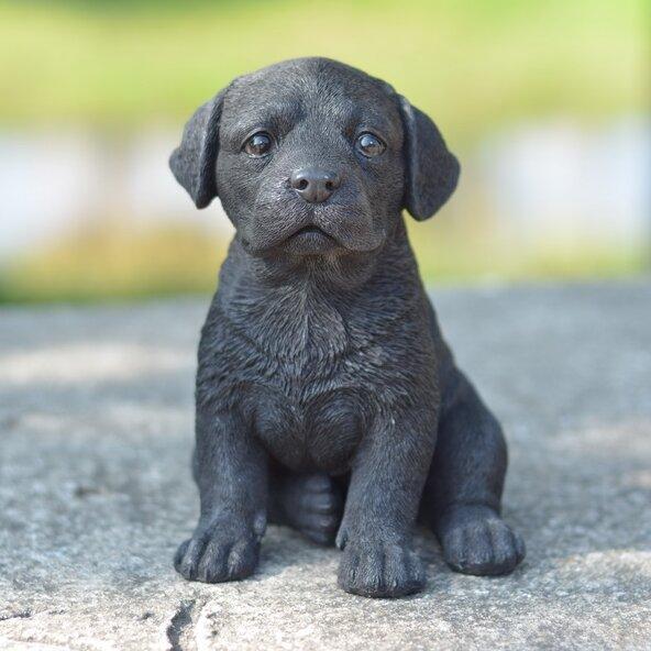 Black Labrador Puppy Statue