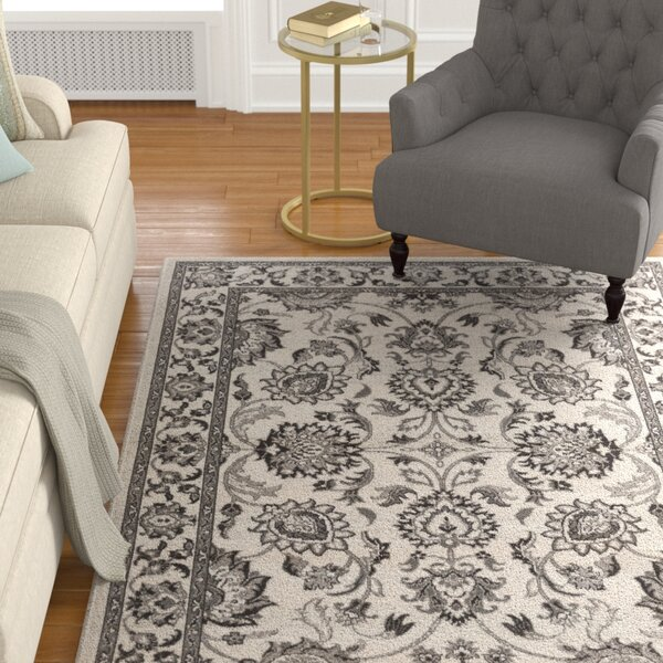 Canfield Gray Area Rug by Alcott Hill