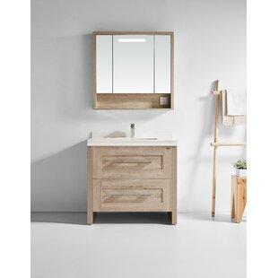 Best Choices Dowell 39 Single Bathroom Vanity Set with Mirror ByBrayden Studio