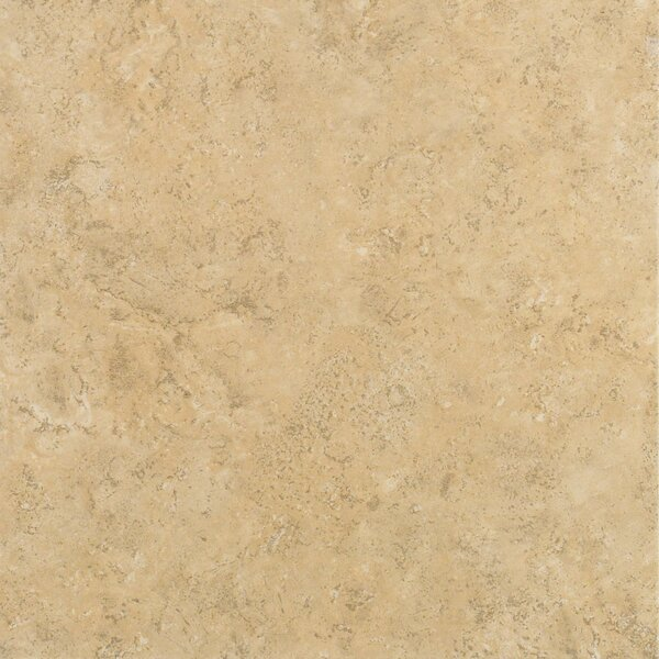 Delight 13 x 13 Ceramic Field Tile in Carter by Shaw Floors