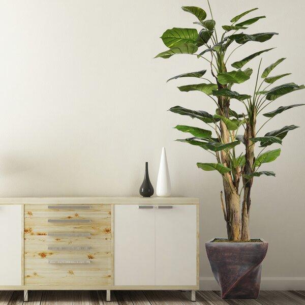 Scindapsus Aureus Floor Tree in Planter by Bayou Breeze