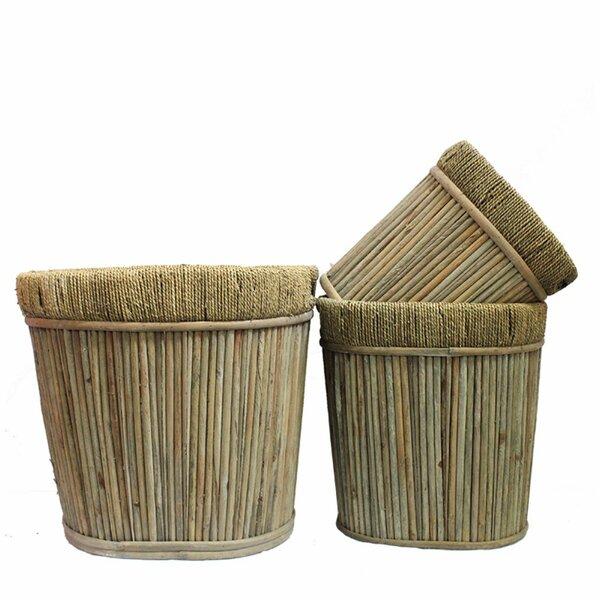 Galasso 3-Piece Wood Pot Planter Set by Bungalow Rose