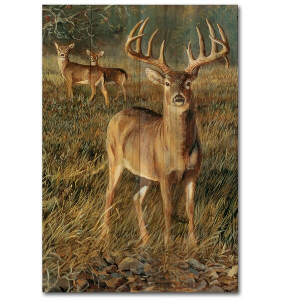 First Light Buck by Persis Clayton Weirs Painting Print Plaque by WGI-GALLERY