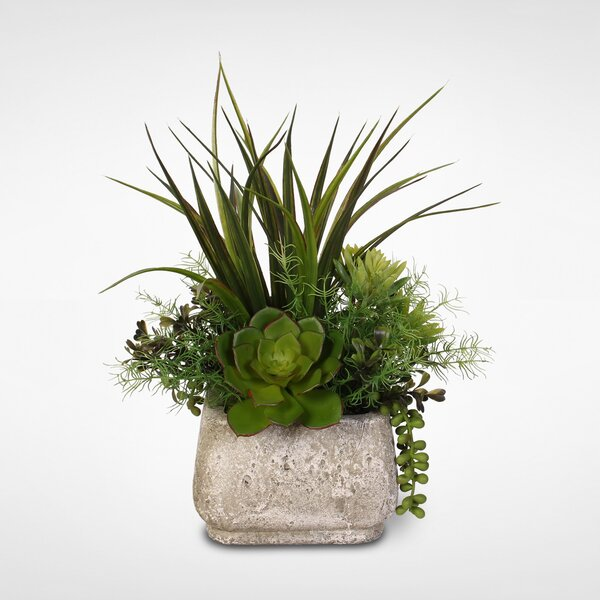 Silk Desktop Succulent Arrangement Plant in Pot by George Oliver