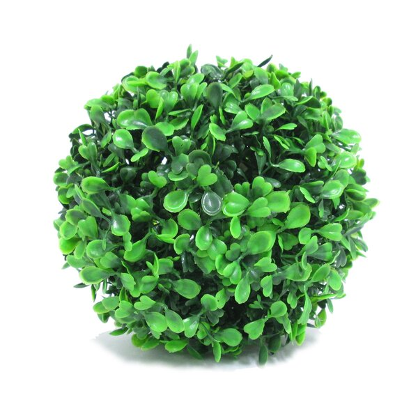 Boxwood Ball Floor Topiary (Set of 6) by Charlton Home