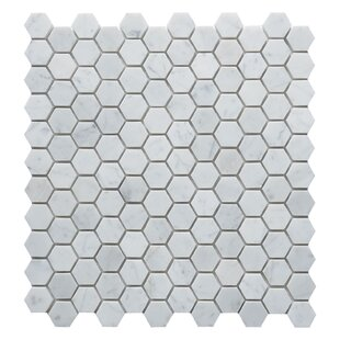Carrara Hexagon 1 X Marble Mosaic Tile In White
