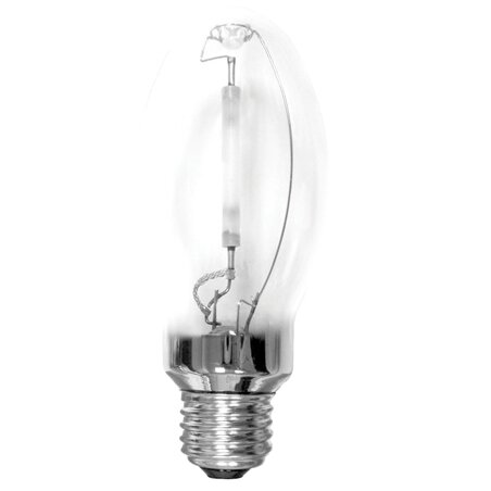 E26/Medium Light Bulb (Set of 3) by Bulbrite Industries