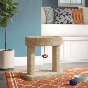 Cat Trees & Condos You'll | Wayfair on designs for outdoor cat enclosures, designs for chicken coops, designs for dog runs,