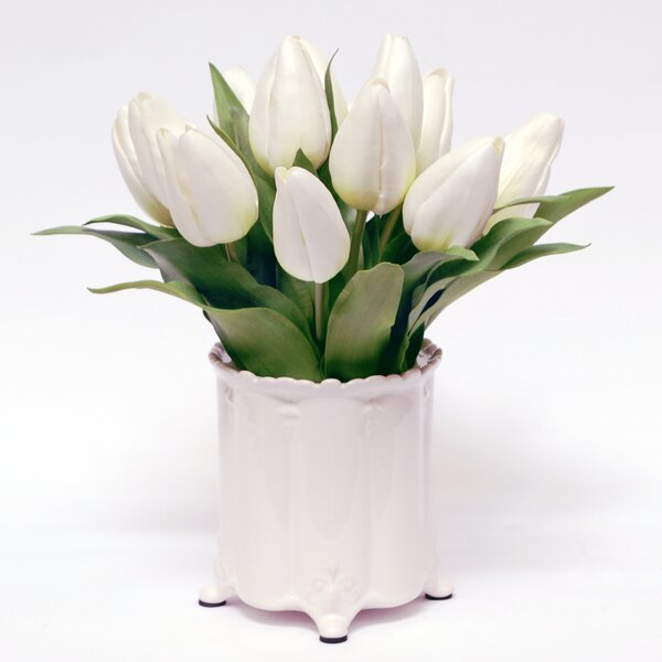White Tulip Flower  in Canister Vase by August Grove