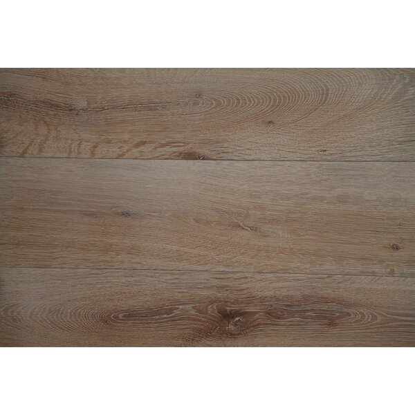 Vita Bella Plus 7 Engineered Oak Hardwood Flooring in Beige/Red by Alston Inc.