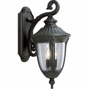 Price comparison Triplehorn 2-Light Outdoor Wall Lantern By Alcott Hill