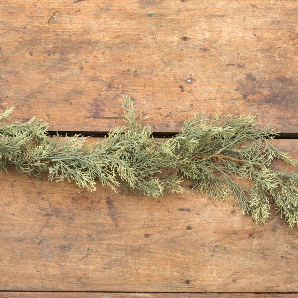 Atlantic White Cedar Garland by The Holiday Aisle