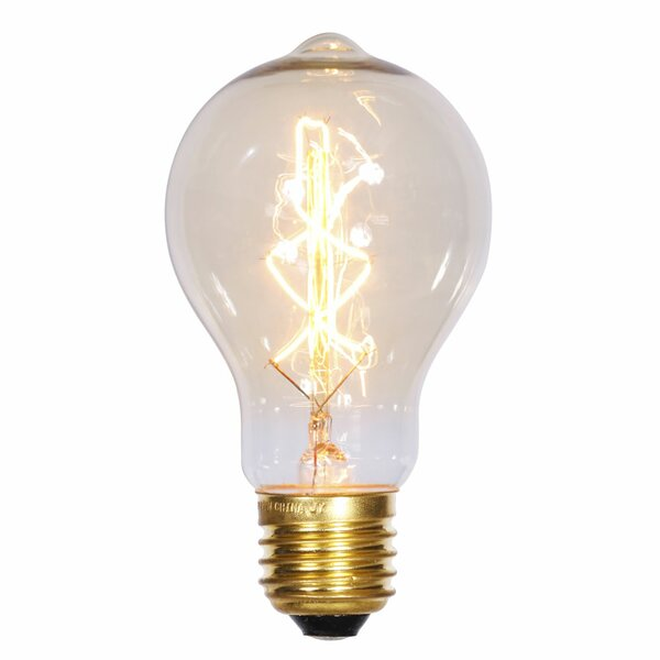 40W E26 Incandescent Edison Light Bulb by Vickerman