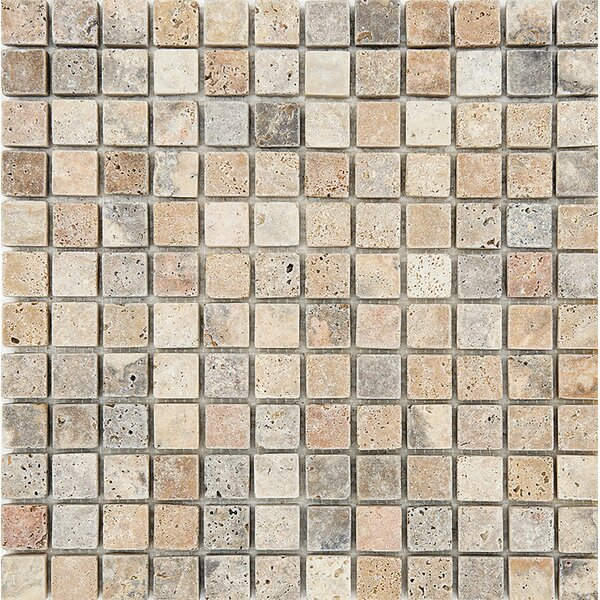 Scabos Tumbled 1 x 1 Stone Mosaic Tile by Parvatile