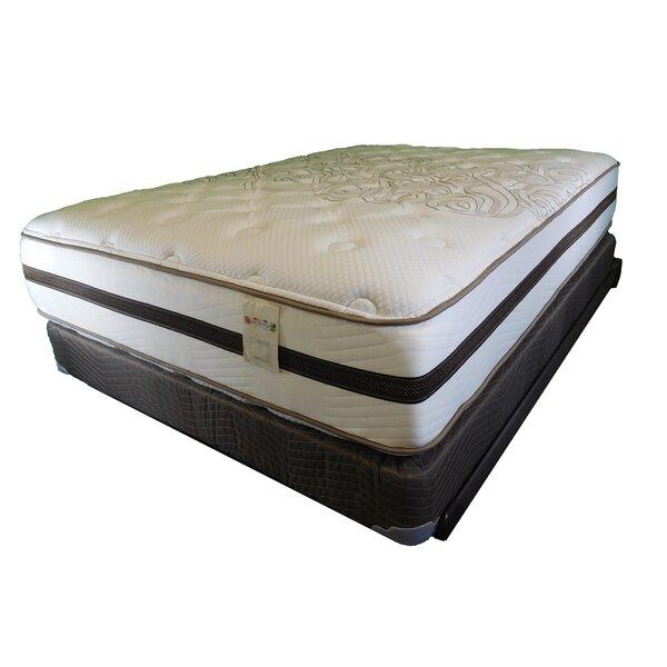 BackSense® II Sheffield Luxury 14 Plush Innerspring Mattress by Therapedic