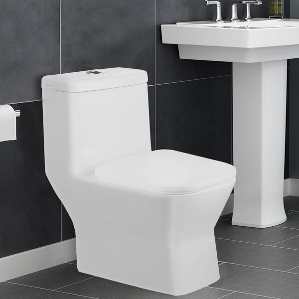 Potomac 1.28 GPF Elongated One-Piece Toilet by Aqualife Corp