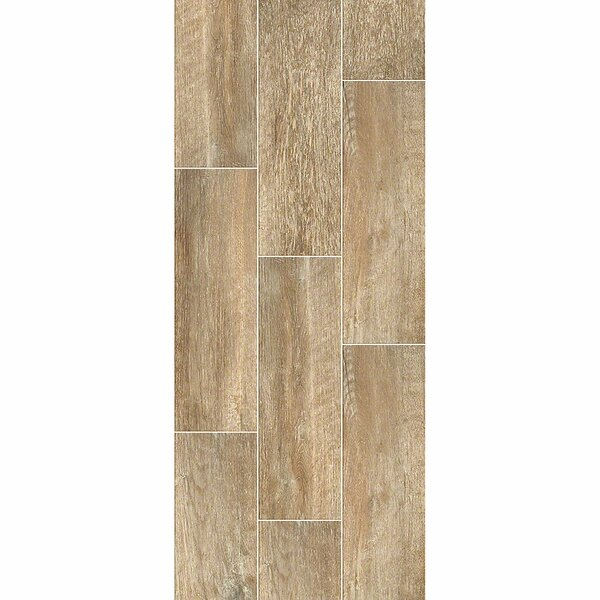 Avenues Plank 7 x 22 Ceramic Field Tile in Mussel by Shaw Floors