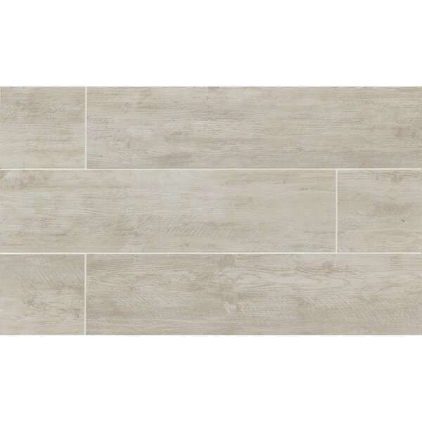 Santa Monica 8 x 36 Porcelain Wood Tile in Ocean Park by Grayson Martin