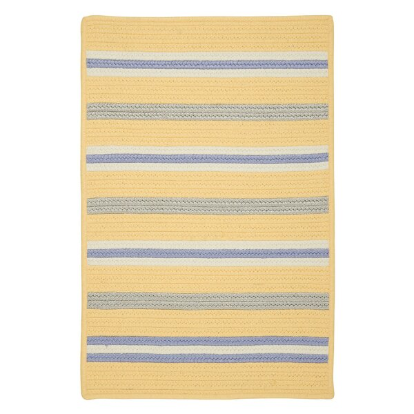 Painter Summer Sun Braided Yellow Indoor/Outdoor Area Rug by Colonial Mills