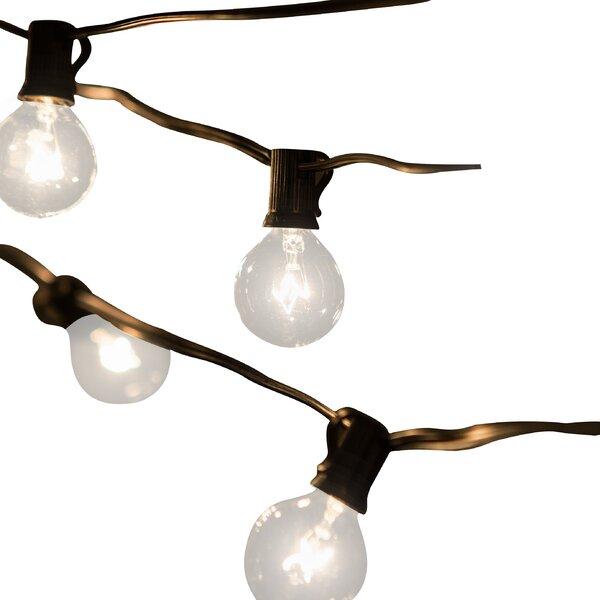 Jaime 50-Light 50 ft. Globe String Lights by Laurel Foundry Modern Farmhouse