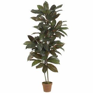 Indoor Tall Fake Plants | Wayfair