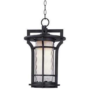 Searching for Espitia 1-Light Outdoor Hanging Lantern By Millwood Pines