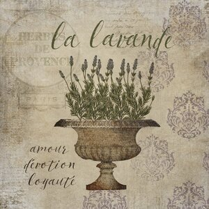 'French Herbs Lavender' by Beth Albert Graphic Art on Canvas by Buy Art For Less