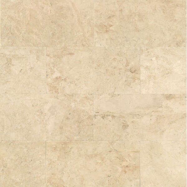 12 x 24 Marble Field Tile in Cappuccino by Grayson Martin