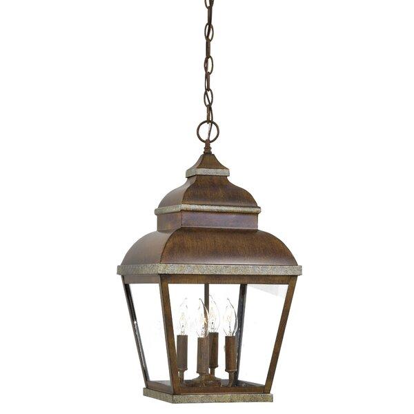 Saniyah  4-Light Outdoor Hanging Lantern by Bloomsbury Market
