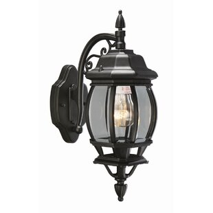 Bargain Diederich 1-Light Outdoor Wall Lantern By Alcott Hill