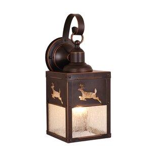 Inexpensive Josefina 1-Light Outdoor Wall Lantern By Loon Peak