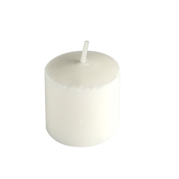 Mini Pressed Unscented Votive Candle (Set of 24) by Charlton Home