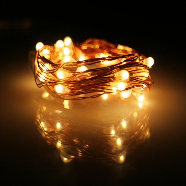Wire 20 LED String Lights by The Holiday Aisle