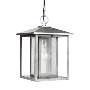 Read Reviews Ashby Outdoor Hanging Lantern By Birch Lane™