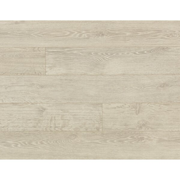 Veriluxe 8 x 80.68 x 9.5 mm Oak Laminate Flooring in Morning Frost by Quick-Step