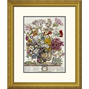 'October - Twelve Months of Flowers' by Robert Furber Framed Photographic Print by Global Gallery