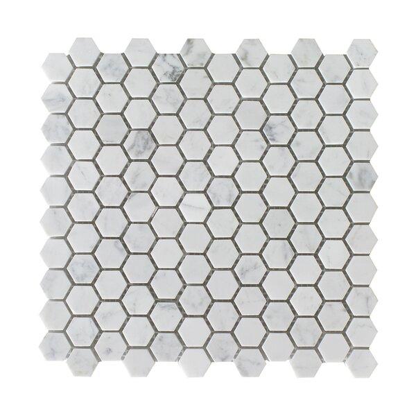 Bianco Carrara Hexagon Honed 12 x 12 Natural Stone Mosaic Tile in White by Seven Seas