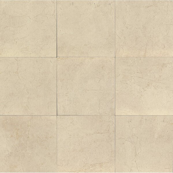 El Dorado 12 x 12 Porcelain Field Tile in Oyster by Grayson Martin