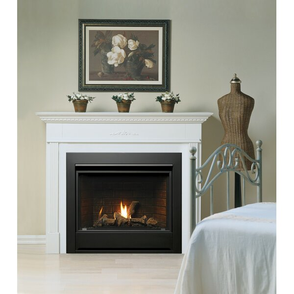 Direct Vent Natural Gas/Propane Fireplace Insert by Kingsman Fireplaces Kingsman Fireplaces
