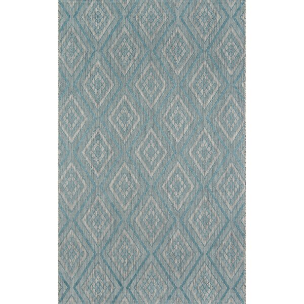 Bjorn Light Blue Indoor/Outdoor Area Rug by Madcap Cottage by Howard Elliott Collection
