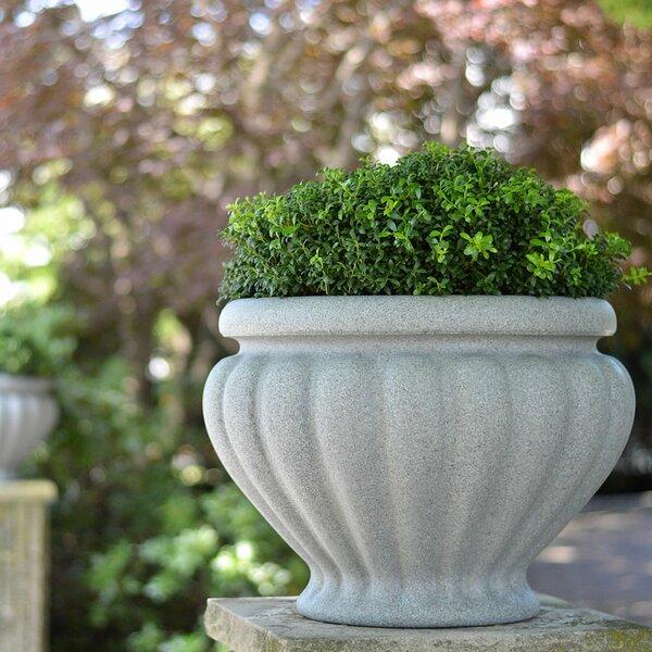Hochstetler Resin Pot Planter by Charlton Home