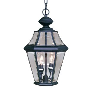 Coupon Violetta 2-Light Outdoor Hanging Lantern By Darby Home Co