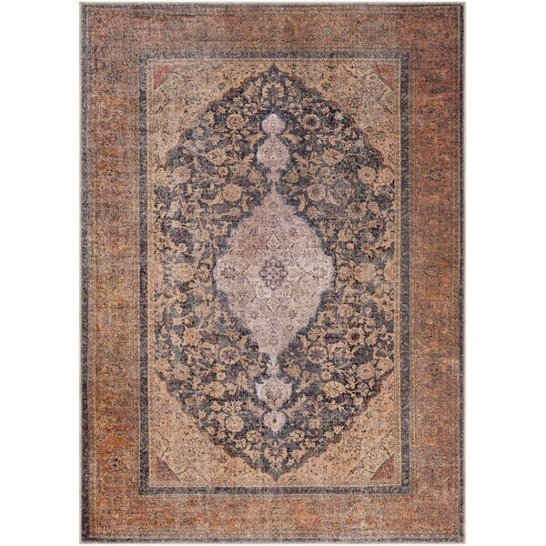 Mya Distressed Floral Wool Clay/Brown Area Rug by World Menagerie
