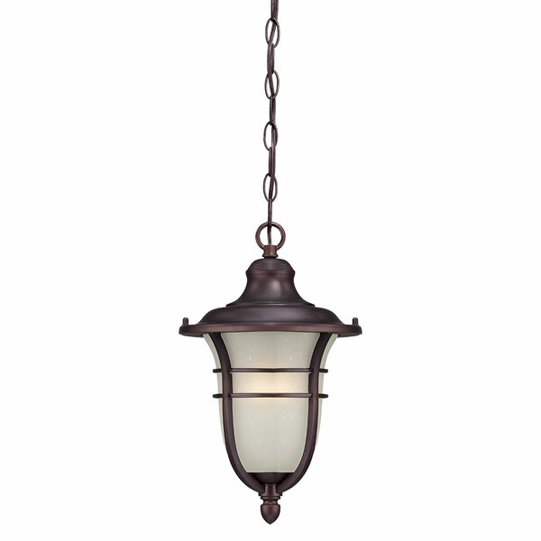 Berryhill 1-Light Outdoor Pendant by Fleur De Lis Living