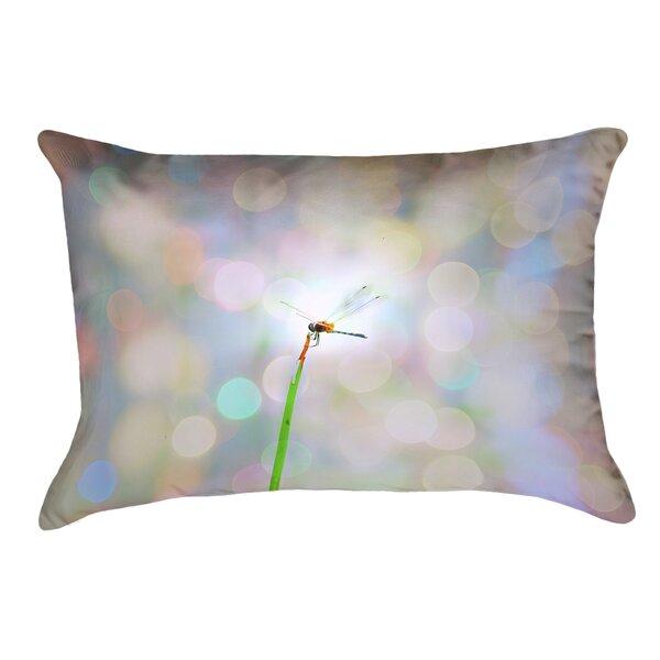 Gemmill Dragonfly And Lights Outdoor Lumbar Pillow