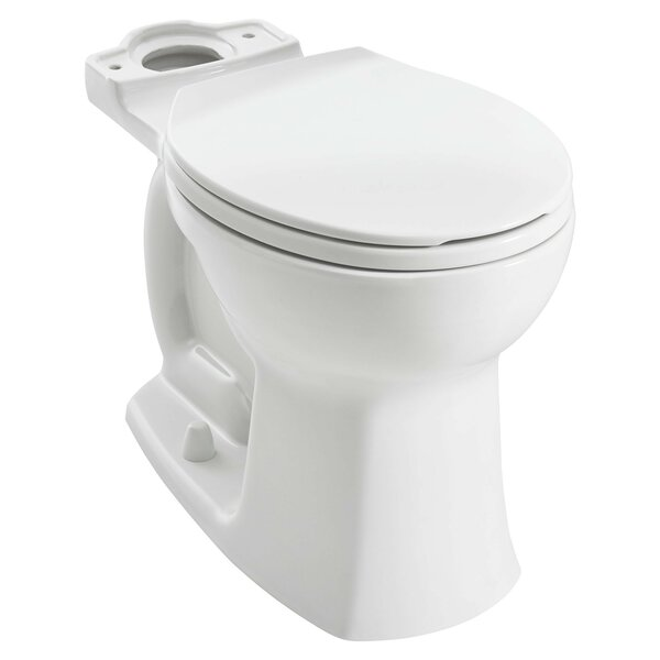 Edgemere Dual Flush Elongated Toilet Bowl by American Standard