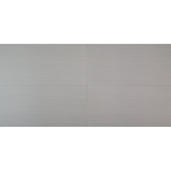 Focus Glacier 12 x 24 Porcelain Filed Tile in Gray by MSI
